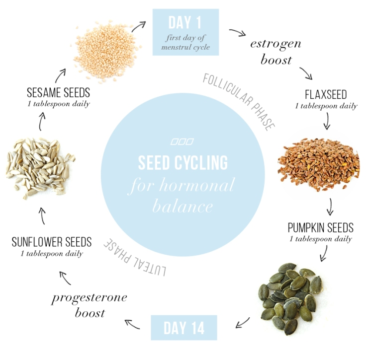 MNB-Seed-Cycling2