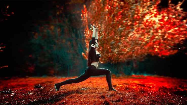 action adult athletic backlit